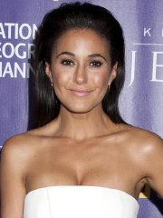 Emmanuelle Chriqui busty wearing a strapless dress at National Geographic's 'Killing Jesus' premiere in NYC