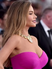 Sofia Vergara busty in tight strapless pink dress at 22nd Annual SAG Awards in LA