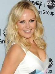 Malin Akerman showing cleavage at the Disney ABC Television Group's 2014 winter TCA party